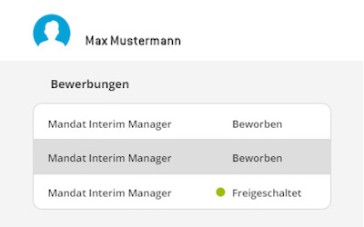 Prozess interim manager 3